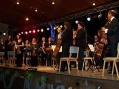 flipbook2011_gaesteorchester.jpg